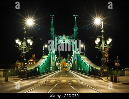 Night view of Liberty Bridge in Budapest, Hungary - Stock Photo
