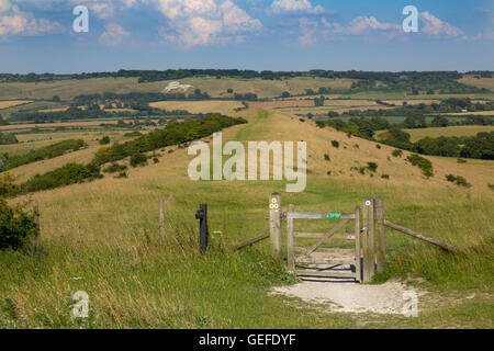 A view from Ivinghoe beacon towards the Whipsnade Lion Buckinghamshire - Stock Photo
