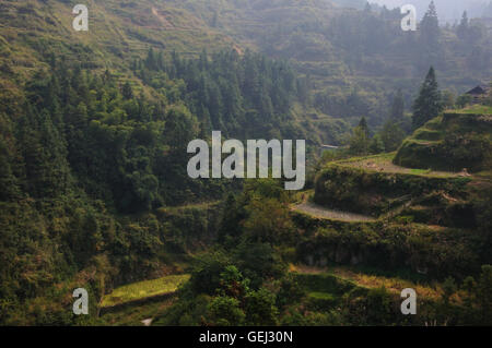 Rice terraces in the mountains up above the small Dong village of Jiting in Guizhou, China. - Stock Photo