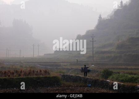 Farmer and Early Morning Fields in Zhaoxing, Guizhou, China - Stock Photo