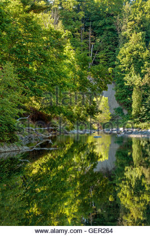 Highland Creek in summer flowing through the Carolinian Forest of Morningside Park in Toronto Ontario Canada river - Stock Photo