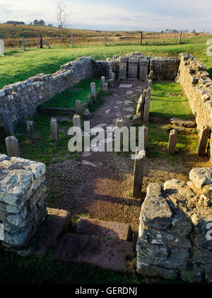 C3rdAD Temple of Mithras (Mithraeum) beside Carrawburgh Roman fort on Hadrian's Wall, Northumberland. Looking W - Stock Photo