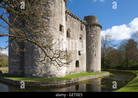 Nunney Castle near Frome in Somerset. - Stock Photo