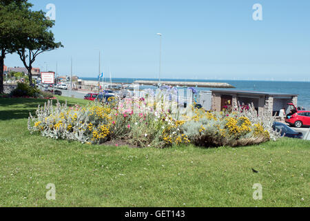 Flower bed looking towards breakwater and harbor at Rhos on Sea North Wales - Stock Photo