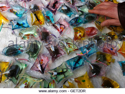 Good luck charms for sale in the witches market la paz for Doctor fish for sale
