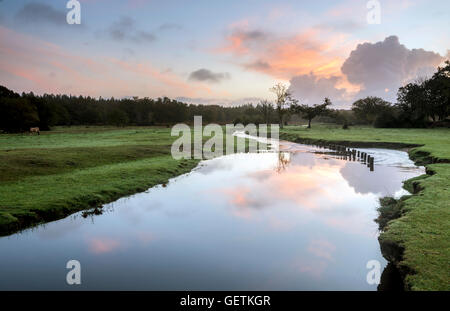 A view of Ober Water in the New Forest. - Stock Photo