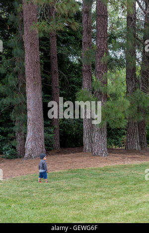 young boy, walking in grass, Sonoma State University, city, Rohnert Park, Sonoma County, California - Stock Photo