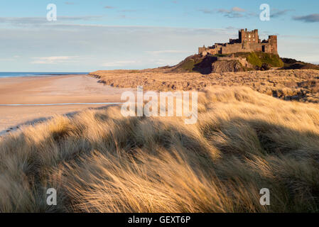 Bamburgh castle in late evening light. - Stock Photo