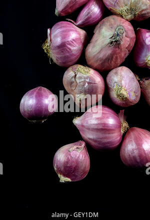 Shallots with Black Background - Stock Photo