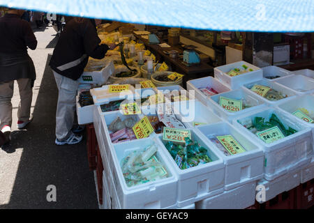 The outer market at the tsukiji fish market in Tokyo, Japan. Display of fresh seafood, spices, cooking tools and - Stock Photo