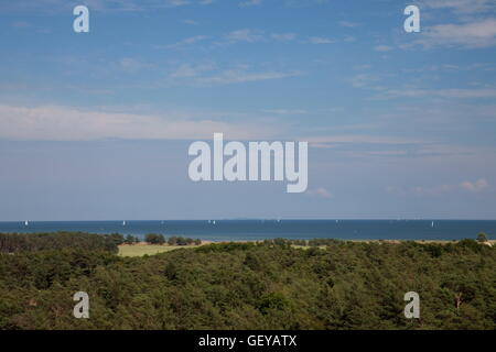 geography / travel, Germany, Mecklenburg-West Pomerania, peninsula 'Fischland', Darß, Zingst, national park 'Vorpommersche - Stock Photo