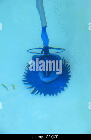 Pool Cleaner Stock Photo Royalty Free Image 36586059 Alamy