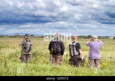 Birdwatching, or birding, birders, wildlife observation binoculars, scopes, optics, tripods at  RSPB Marshside Reserve, - Stock Photo
