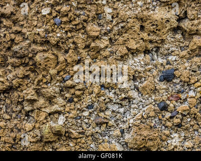 Background of the colorful stones and rocks on a beach - Stock Photo