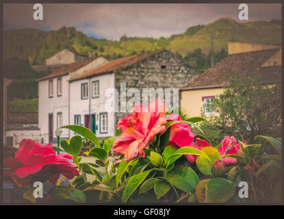Traditional homes in Furnas town, which lies in the volacano crater, Sao Miguel, Azores, Portugal - Stock Photo