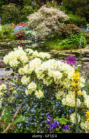 An ornamental garden pond in an english country garden for Ornamental pond fish uk