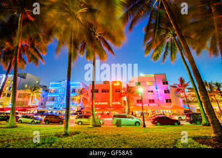 MIAMI, FLORIDA - JULY 5, 2016: Palm trees line Ocean Drive. The road is the main thoroughfare through South Beach. - Stock Photo