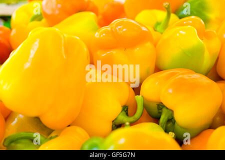 A pile of fresh, ripe yellow Bell peppers (Capsicum annuum) - Stock Photo