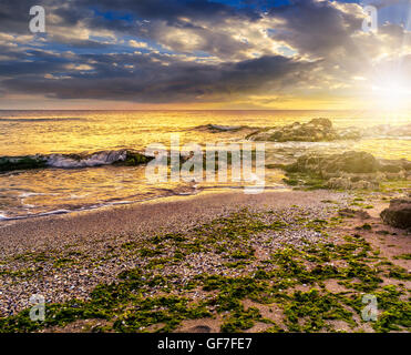 number of stones and rock on the sandy sea coast. seaweed lie on the sand made by the storm in evening light - Stock Photo
