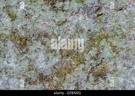 Texture background. Shapes and colors of the cracks and crevices of an old stone wall covered in lichen - Stock Photo