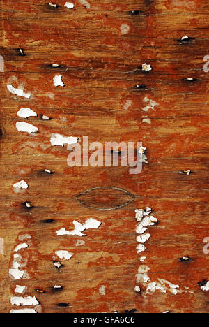 Detail of peeling paint on old building - Stock Photo