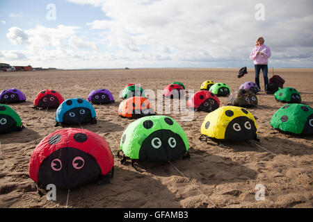 Lytham St Anne, near Blackpool, UK. 30th July, 2016. Lynn Bleasdale, on of the first kiters to arrive, sets up her - Stock Photo