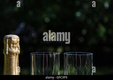 Unopened champagne bottle with two glasses by a dark background - Stock Photo