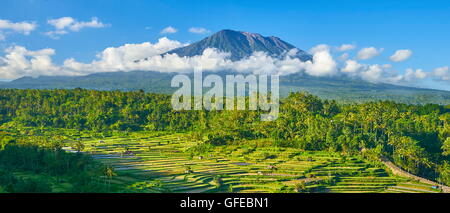 Panoramic landscape of Gunung Agung Volcano and rice field terrace, Bali, Indonesia - Stock Photo