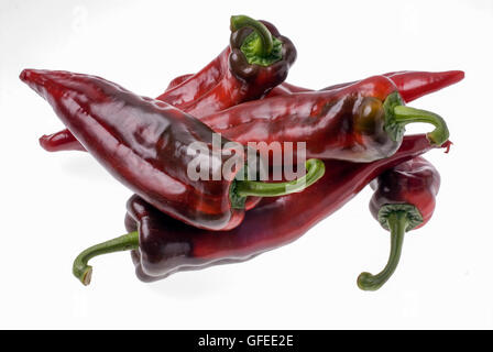 Red hot chilli peppers on white background - Stock Photo