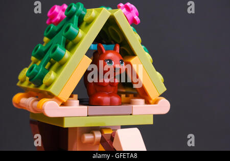 Tambov, Russian Federation - April 02, 2016 Lego Friends Squirrel in her house. Black background.  Studio shot. - Stock Photo