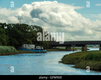 Landscape depicting the Goosemoor & River Clyst Bridge near Topsham in the background with meandering Clyst in the - Stock Photo