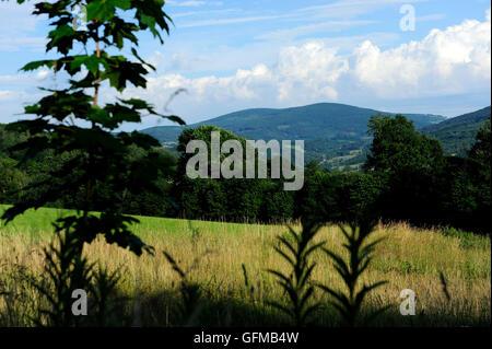 dolnoslaskie, landscape, wielka sowa, zagorze sl, silesia, poland, lower silesia, golden, train, sowie, gory, mountain, - Stock Photo