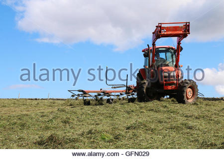Holwick, Middleton-in-Teesdale, Co Durham, UK 1st August 2016. The ancient proverb 'Make hay while the sunshines' - Stock Photo