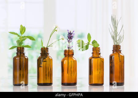 Bottle of essential oil with herbs and spices in brown bottles - Stock Photo