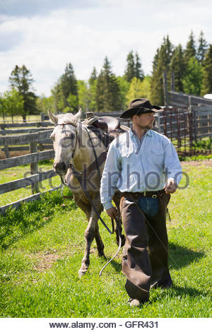 Cattle rancher walking horse on sunny ranch - Stock Photo