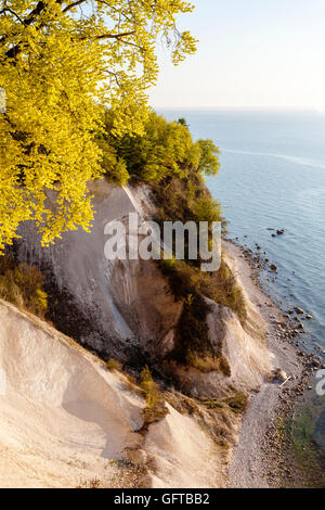 Chalk cliff Jasmund National Park, Rügen, Germany, Unesco World Heritage. - Stock Photo