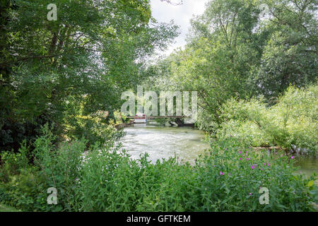 The River Thames at Pangbourne in Berkshire - Stock Photo