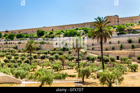 City Walls of Jerusalem above the Kidron Valley - Stock Photo