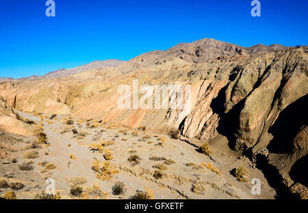 Anza-Borrego Desert State Park - Stock Photo