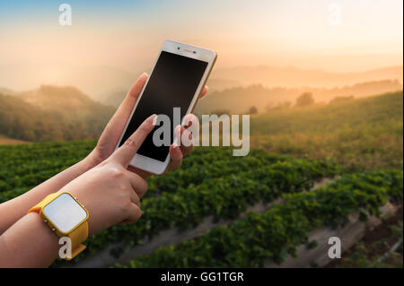 Young woman wearing yellow watch touching on smartphone screen with blurry outdoor nature background in morning - Stock Photo