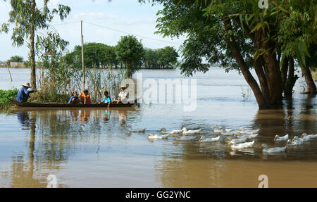 MEKONG DELTA, VIET NAM, Group of child sit on row boat, man rowing on river, flock of duck, tree in flood season,Vietnamese - Stock Photo