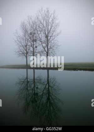 Fog, Saint-Usage, Canal de Bourgogne, France - Stock Photo