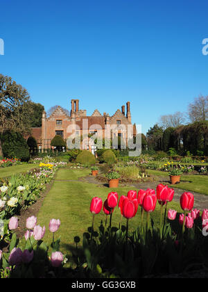 Portrait of Chenies Manor House and sunken garden at tulip time with bright blue sky and bright pink tulips framing - Stock Photo