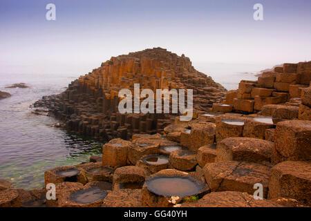 Giant's Causeway Moyle Northern Ireland - Stock Photo