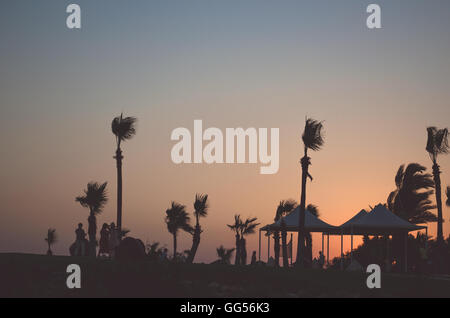 Sunset Palm trees in Ayia Napa - Stock Photo