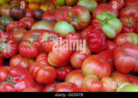 Heaps of beefsteak red and green tomatoes close-up - Stock Photo