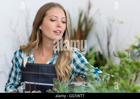 Close-up of a woman arranging plants - Stock Photo