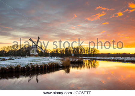 Witte Molen (White Mill) Dutch windmill in winter at sunset, Harn, Groningen, North Holland, Netherlands, Europe - Stock Photo