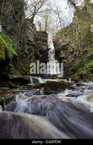 Mill Gill Force waterfall, Askrigg, Wensleydale, North Yorkshire, Yorkshire, England, United Kingdom, Europe - Stock Photo