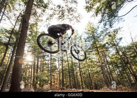 Mountain Biking In The New Forest Near Ashurst Stock Photo